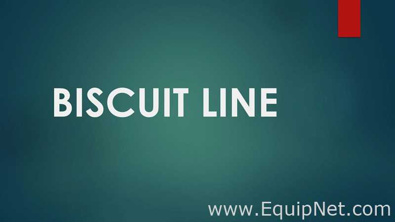 Basari Makina 2010 Full Biscuit Line